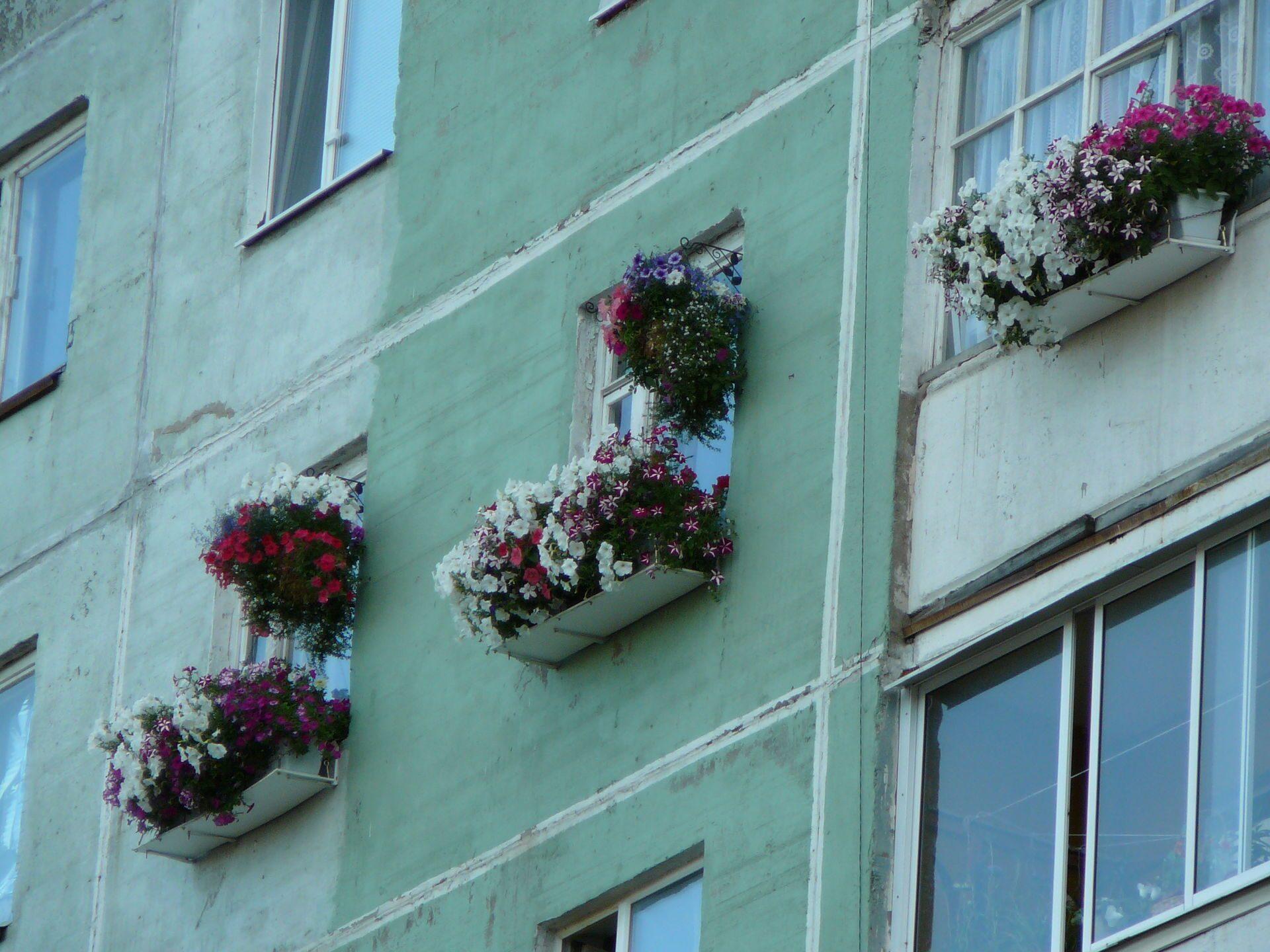 Цветочные ящики своими руками за окном 9